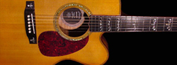 The Prodigy Elite Flat Top Acoustic Guitar