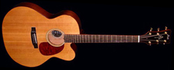 The Prodigy Flat Top Acoustic Guitar